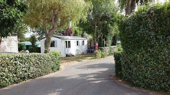 Camping La Forêt : Mobilheim