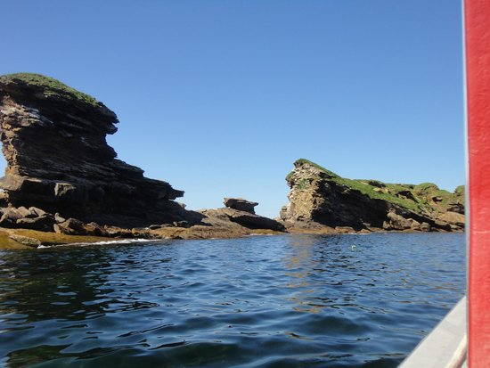 Bird Island Boat Tour: Part of the nesting area/The Boot