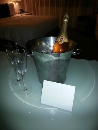 Sonesta Fort Lauderdale Beach: A surprise from David and the Front Desk Staff for our Aninnersary Celebration.