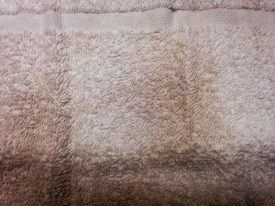 "Best Western Milton Inn : ""Clean wash cloth"""