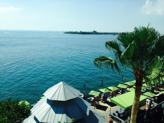 Ocean Key Resort & Spa: View from room 514