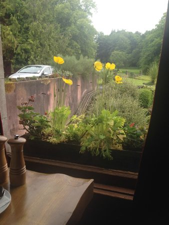 Belleek Castle: View from dining room