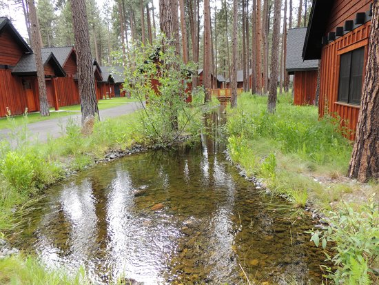 Five Pine Lodge & Spa: Stream