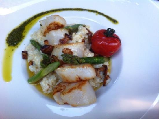 L'Institution : Coquilles St Jacques