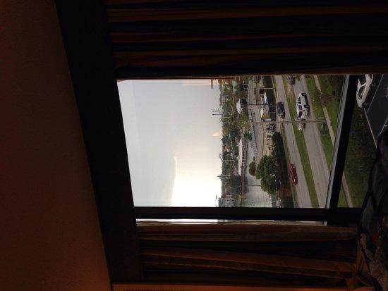 Best Western Orlando Gateway Hotel: Linda vista!
