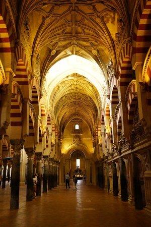 Cathédrale de Cordoue : Looking down the columns