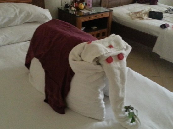 Xperience St. George Homestay: towel art