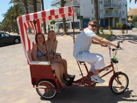 Bay Bikes: family bike
