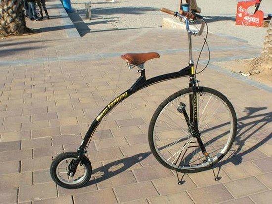 Bay Bikes: penny farthing
