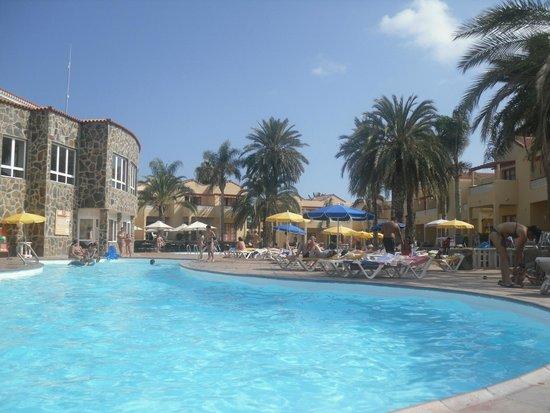 Apartamentos THe Koala Garden: pool area and view of dining area outside