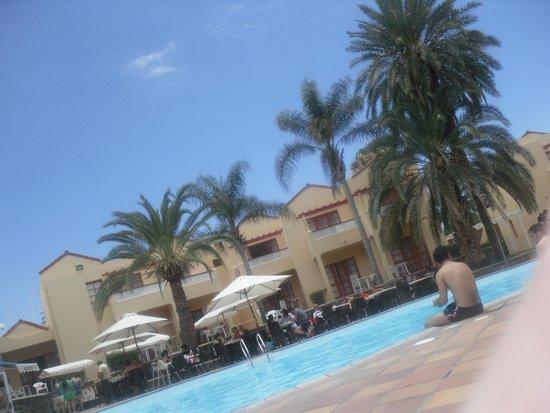 Apartamentos THe Koala Garden: pool area