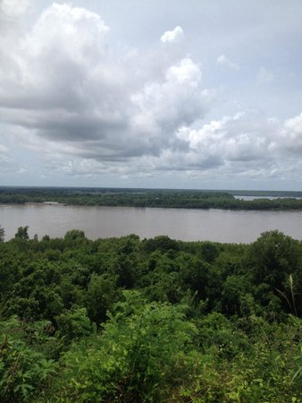 Marcia's Cottages: Rear View from Evergreen of the MS River