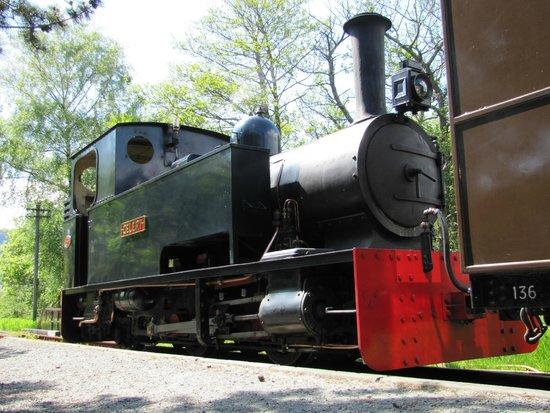 Gelert on the Welsh Highland Heritage Railway