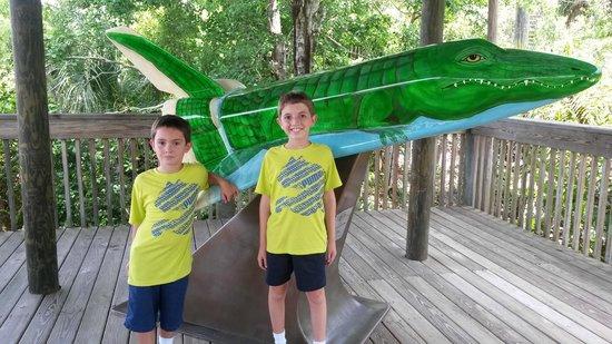 Brevard Zoo: Gator Shuttle!