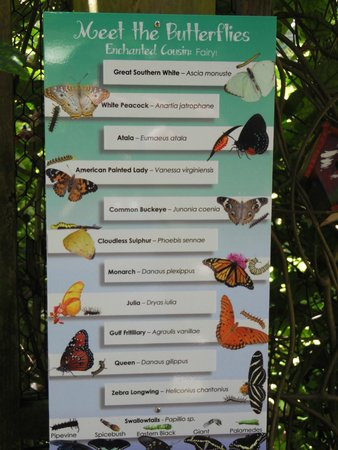 Brevard Zoo : Butterfly sign