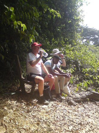 Abuko Nature Reserve: A well earned rest whilst walking Abouko.