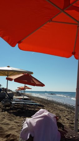 Halikounas Beach: Usually lots of sunbeds available