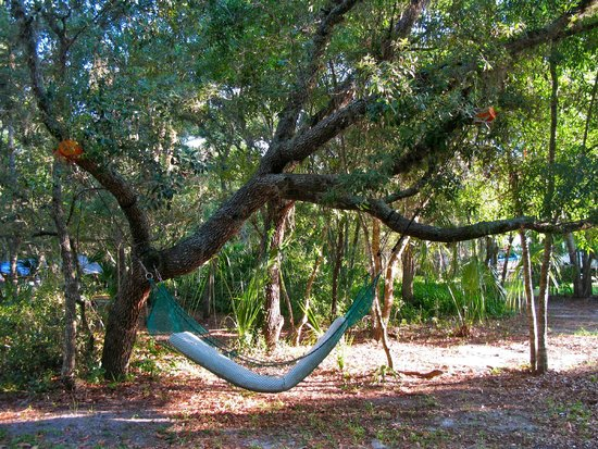 Cody's Catfish Pond and RV Park : relaxation in Gulf Paradise