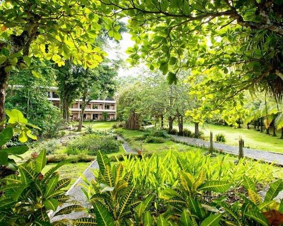 Karahe Beach Hotel: Jardines