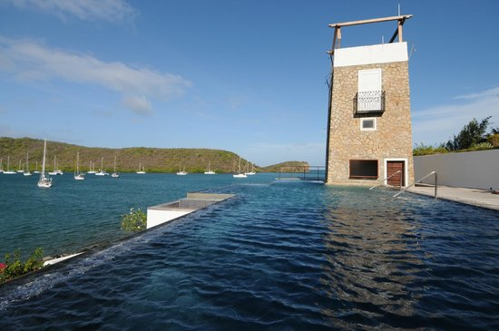 Mount Hartman Bay Estate: infinity pool with swim up bar