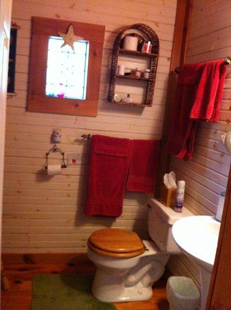 Henson Cove Place B&B: Rainy's bathroom w/shower