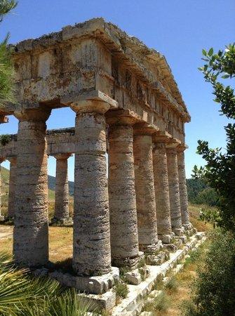 Tempio di Segesta (Tempio Influenza Greca): Sugesta June 2014