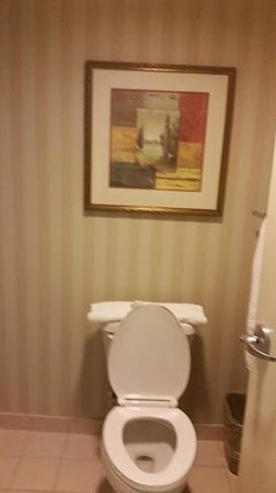 Homewood Suites Ft. Lauderdale Airport & Cruise Port: picture in bathroom