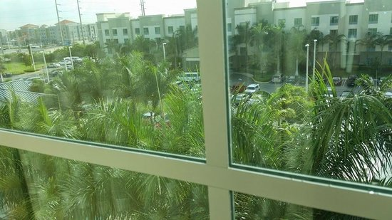 Homewood Suites Ft. Lauderdale Airport & Cruise Port: another view