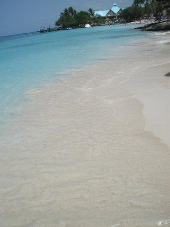 Dreams La Romana: Amazing Beach at the resort, perfect white sand.