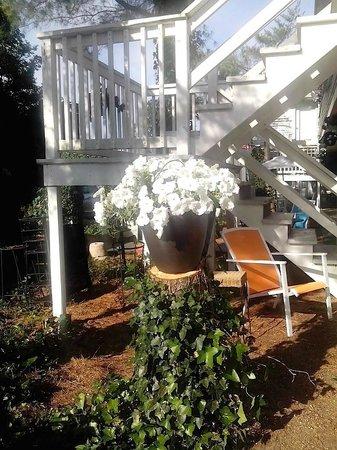 Blue Whale Inn: GARDEN WITH SITTING AREA