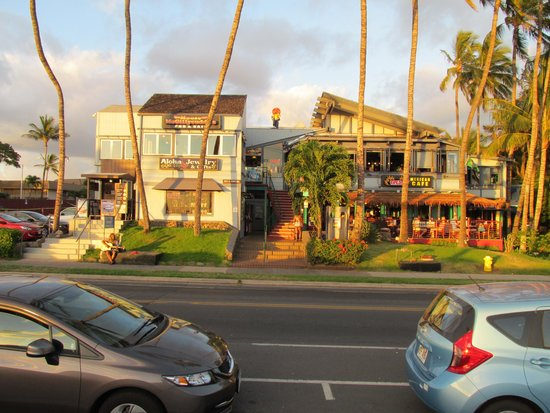 Moose McGillycuddy's: Moose's looks right out to the beach!
