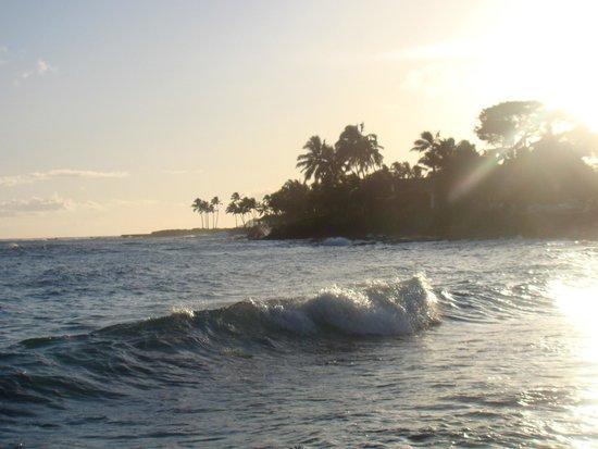 Prince Kuhio Condos : lawai beach