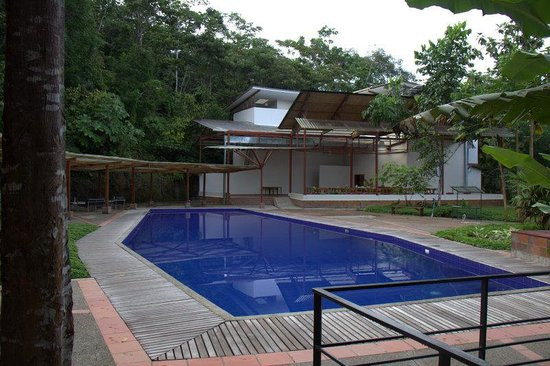 Itamandi EcoLodge : swimming pool
