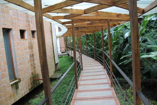 Itamandi EcoLodge : walk way to the rooms - stay dry but in the jungle