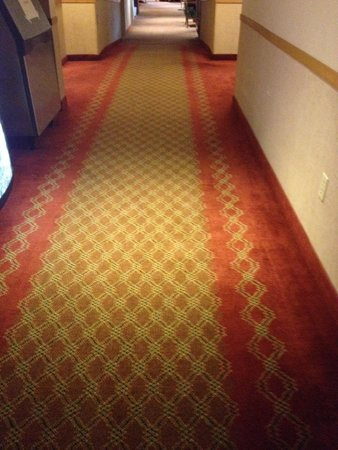 Commodores Inn: Carpet is a little ... Old fashioned but still decent decor m