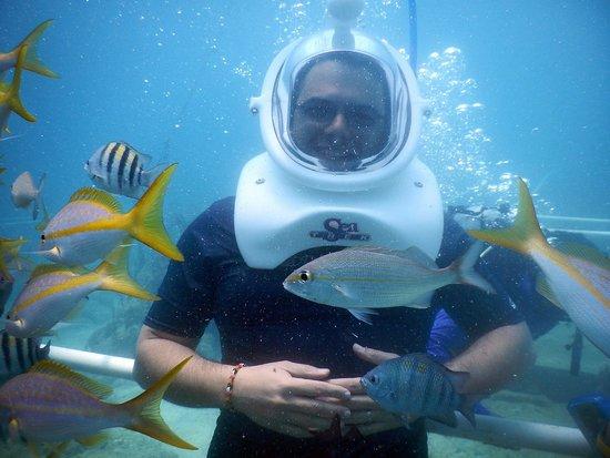 Sea Trek St. Maarten: Here I am, just enjoying the view.