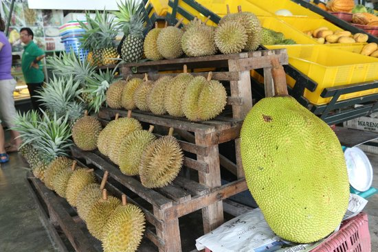 Tropical Fruit Farm: Durians