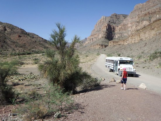 Hualapai River Runners: Bus & road we travelled on from Peach Springs to river