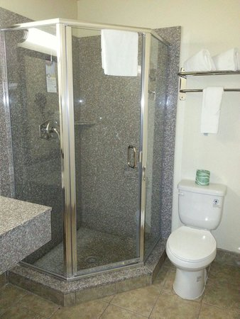 Quality Inn & Suites Escondido: Bathroom was updated and shower was crystal clear clean.