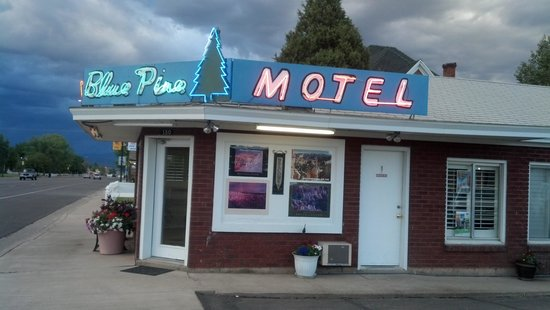 Church's Blue Pine Motel : How can one resist the warm glow of this charming neon sign?
