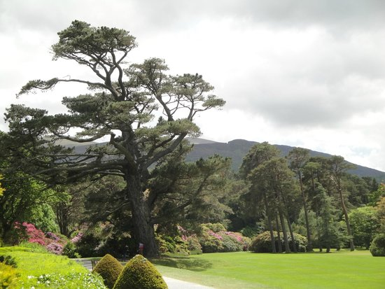 Muckross House, Gardens & Traditional Farms : Garden View