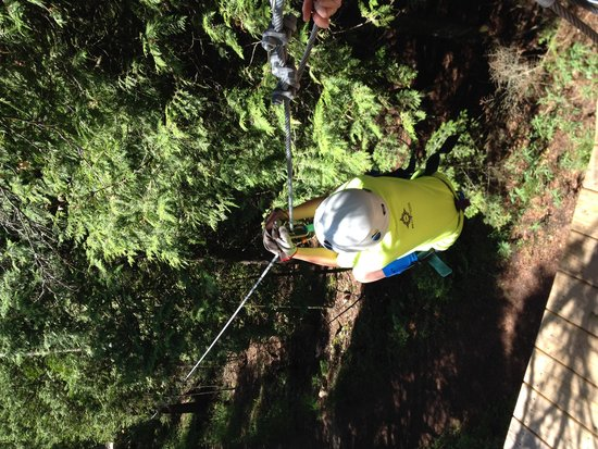 Door County Adventure Center - Day Tours: Canopy zipping