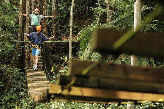 Explornatura: Hanging Bridge!