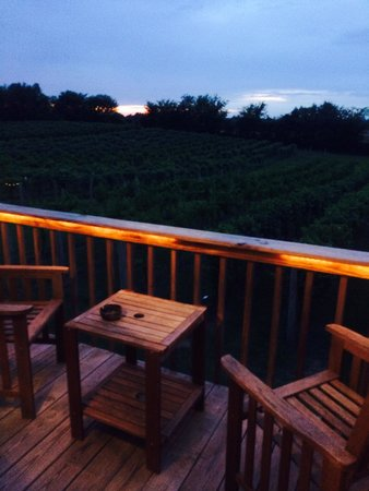Ruby Moon Vineyard & Winery: Truly beautiful dream!