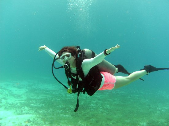 "Diving Adventures: ""I can fly!"""