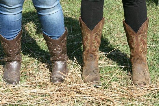 Heartland Country Resort: Cowgirls