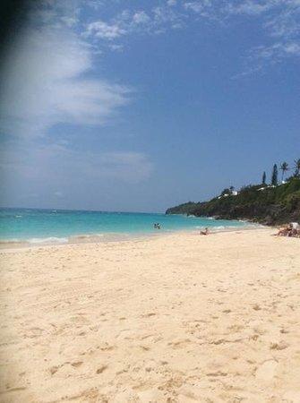 The Reefs: pink sand beach