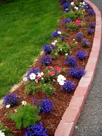 Quality Inn & Suites: Colorful flower beds on hotel grounds
