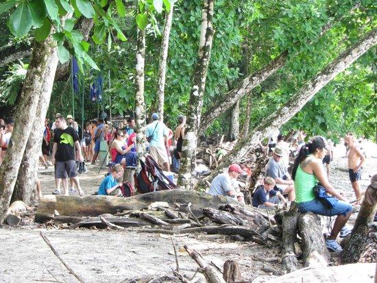Playa Manuel Antonio: crowds at the beach around 9am