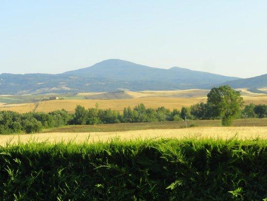 Agriturismi Il Castello La Grancia: Vista desde la pileta